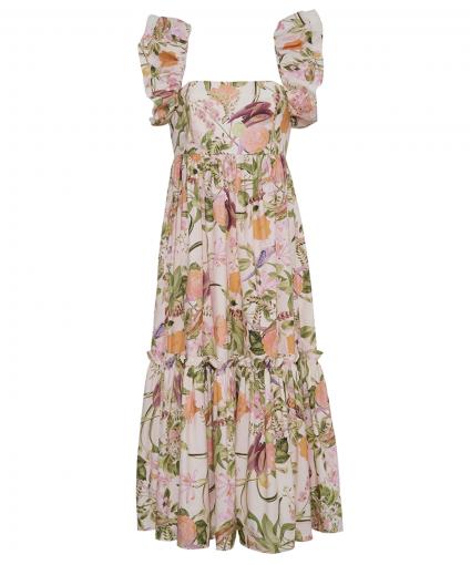 darby dress tropical bird blush cara cara